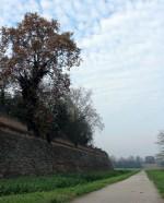 Mura della città. Fotografia di Sandra Dvoranova. © MEIS