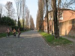 Corso Ercole I d'Este con biciclette. Milko Marchetti. © Archivio Fotografico della Provincia di Ferrara