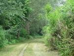 Il Parco Fluviale del Po