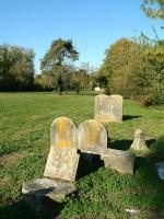 Lapidi del Cimitero Ebraico in Via delle Vigne. Fotografia Baraldi. © IAT Ferrara - Ferrara Terra e Acqua